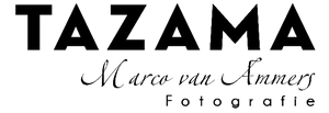 Team Beeldmakers Alpe d'HuZes, Tazama
